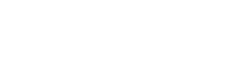 logo-serendipity-conseil-blanc-retina3
